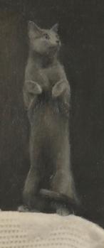 undercover grey cat