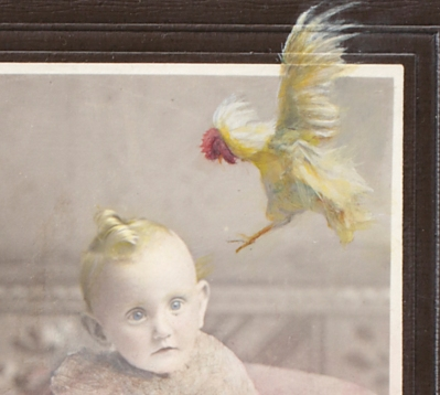 baby head and flying chicken